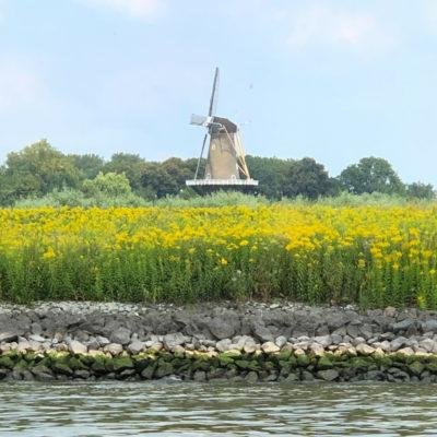 Picturesque Kinderdyk Windmills